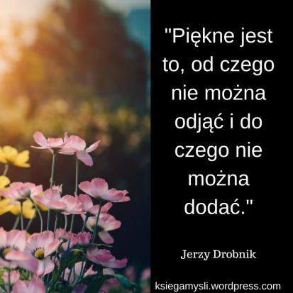 """""""Piękne jest to, od czego nie można odjąć i do czego nie można dodać."""" Jerzy Drobnik"""
